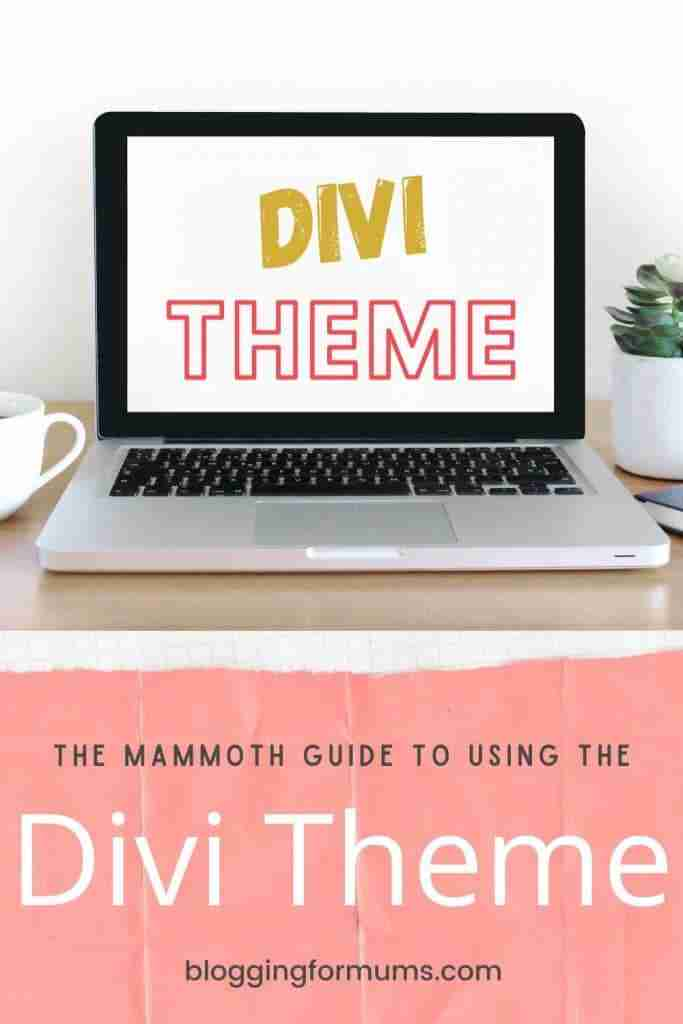All about the divi theme blog post